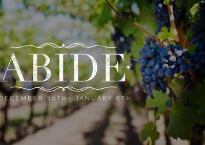 Abide/ Week 3/ John 15:1-8
