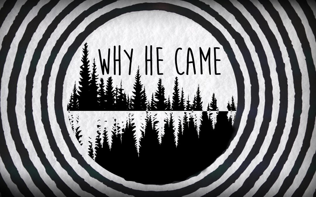 Why He Came